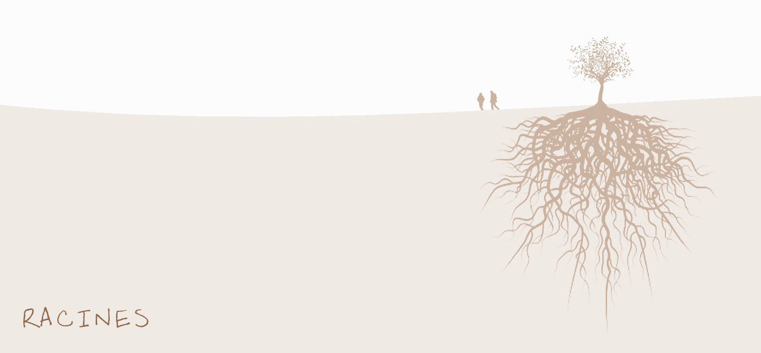 tree_roots-wallpaper-2560x1440